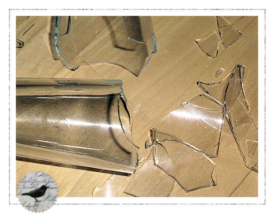 Die Rabenfrau: Vase kaputt