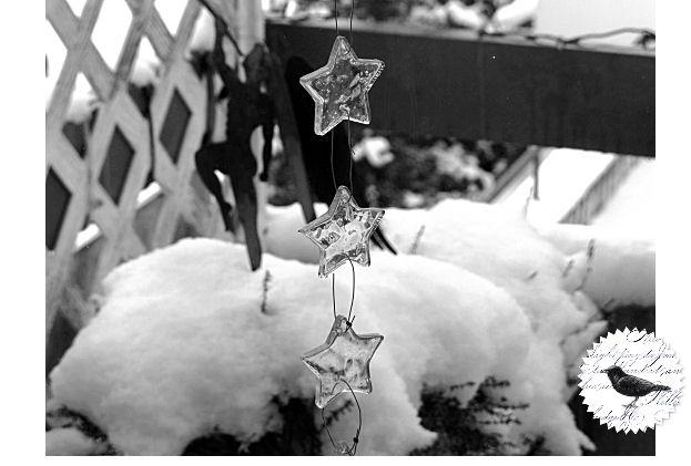 Die Rabenfrau schwelgt in Winterfreuden
