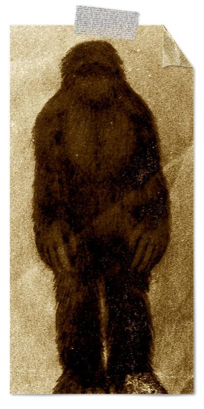 Die Rabenfrau über den Yeti oder Bigfoot