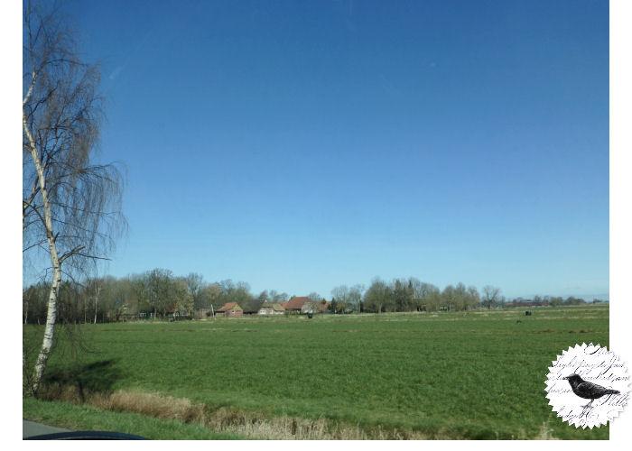 Die Rabenfrau im Oldenburger Land